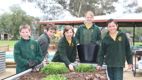Illabo Public School students in front of their new garden pot