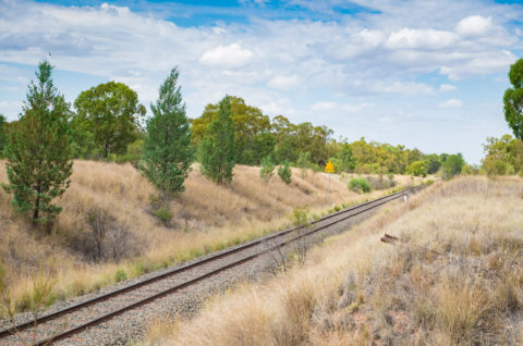Rail track traveling through a grassy area